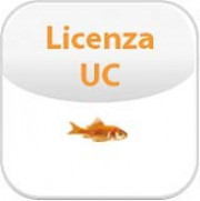 02-00044-001 UC LICENSE LICENZE