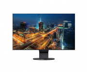 FLEX EVSERIES 24WIDE IPS PANEL